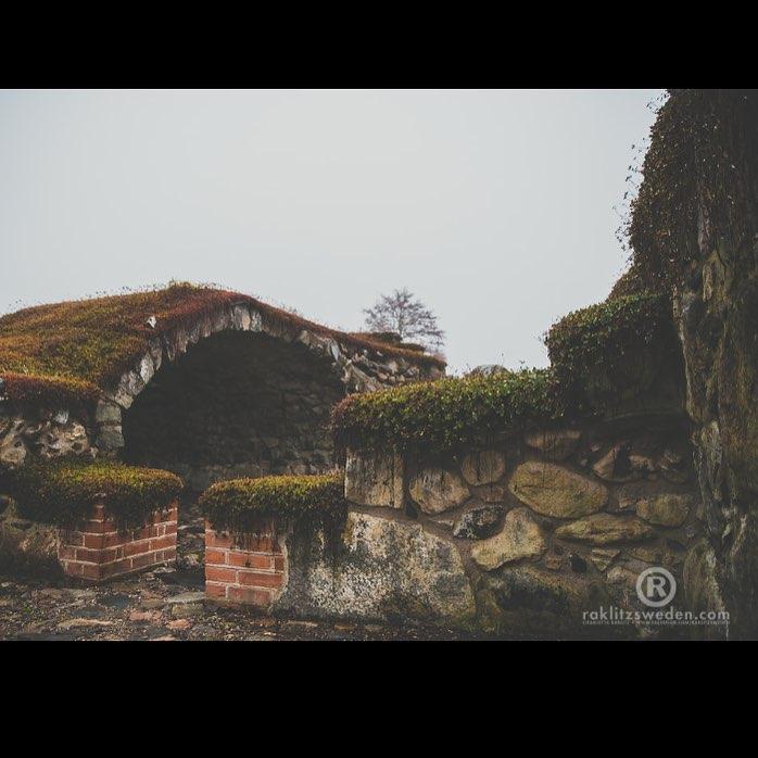 Klosterruinen vid Borasjön /Lax
